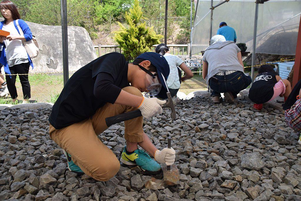 化石発掘体験/かつやま恐竜の森(福井県/勝山市)