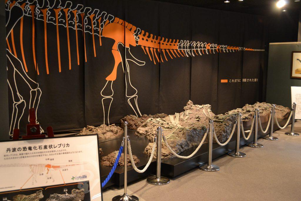 丹波の恐竜化石の展示/兵庫県立人と自然の博物館(兵庫県/三田市)