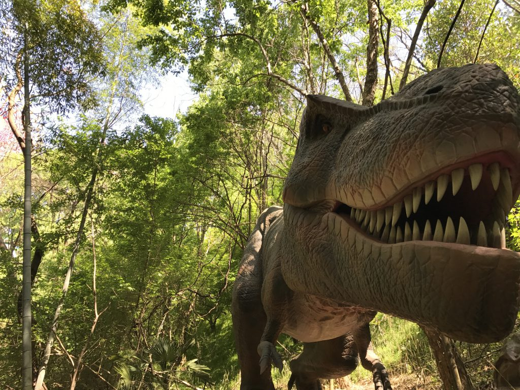 ティラノサウルスの復元模型/みろくの里 ダイナソーパーク(広島県/福山市)