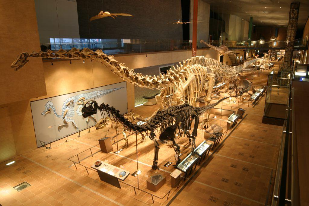 復元骨格の数々/北九州市立自然史・歴史博物館(いのちのたび博物館)(福岡県/北九州市)