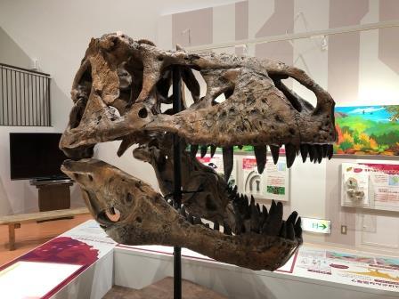 ティラノサウルスの頭骨/長崎市科学館~スターシップ~(長崎県/長崎市)