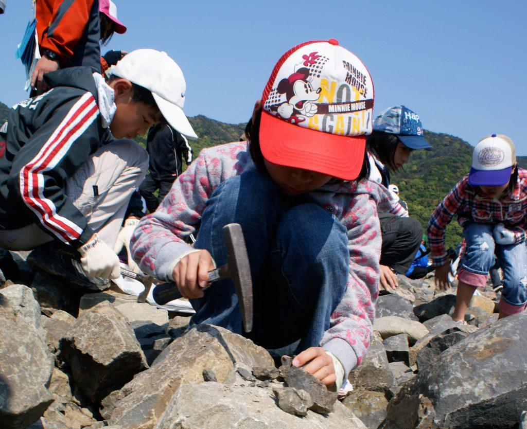 化石採集体験/天草市立御所浦白亜紀資料館(熊本県/天草市)