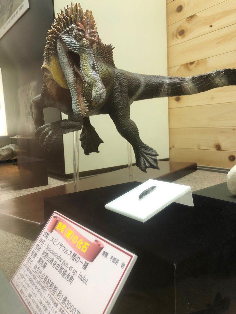 スピノサウルス類の化石展示/和歌山県立自然博物館(和歌山県)
