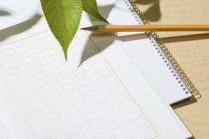 夏休みの宿題対策!旅行絵日記&読書感想文の書き方アドバイス