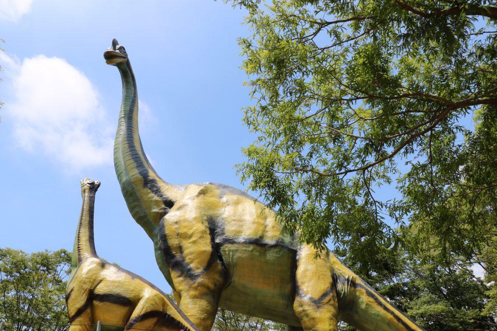 ブラキオサウルスの復元模型/豊橋市自然史博物館(愛知県/豊橋市)