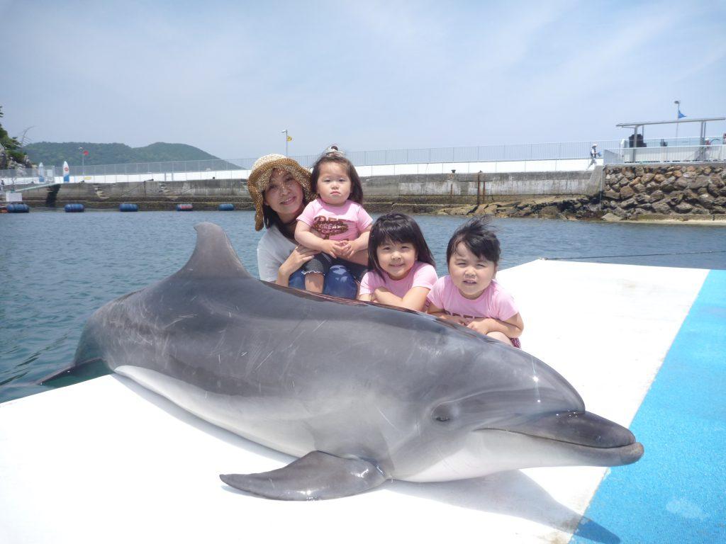 イルカと一緒に記念撮影ができる/うみたま体験パーク「つくみイルカ島」(大分県/津久見市)