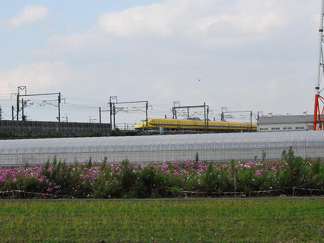 前を通過するドクターイエロー/道の駅 アグリの郷栗東(滋賀県/栗東市)
