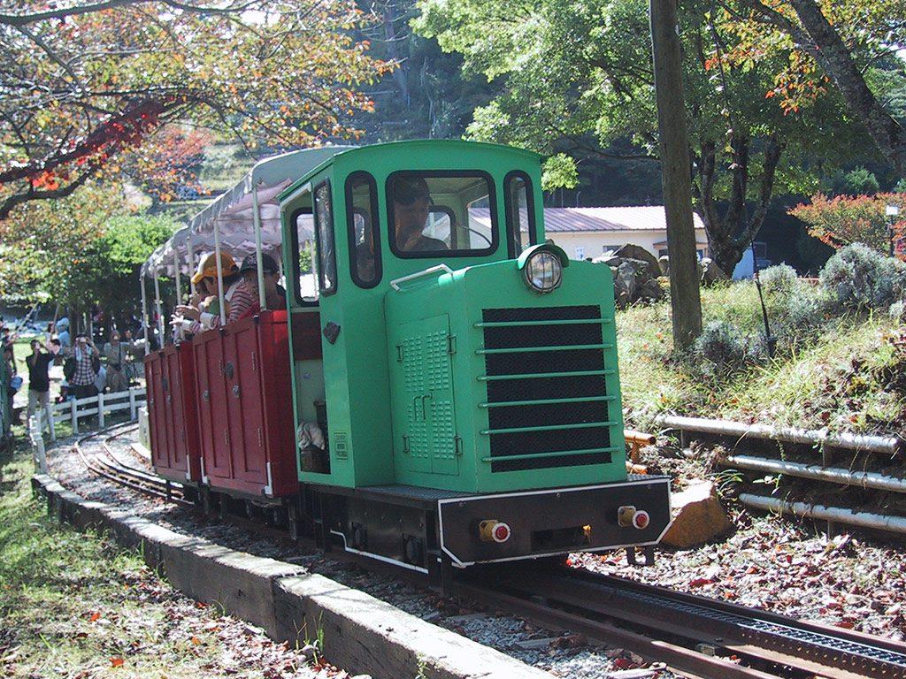 シグナス森林鉄道に乗る子どもたち(兵庫県/川西市)