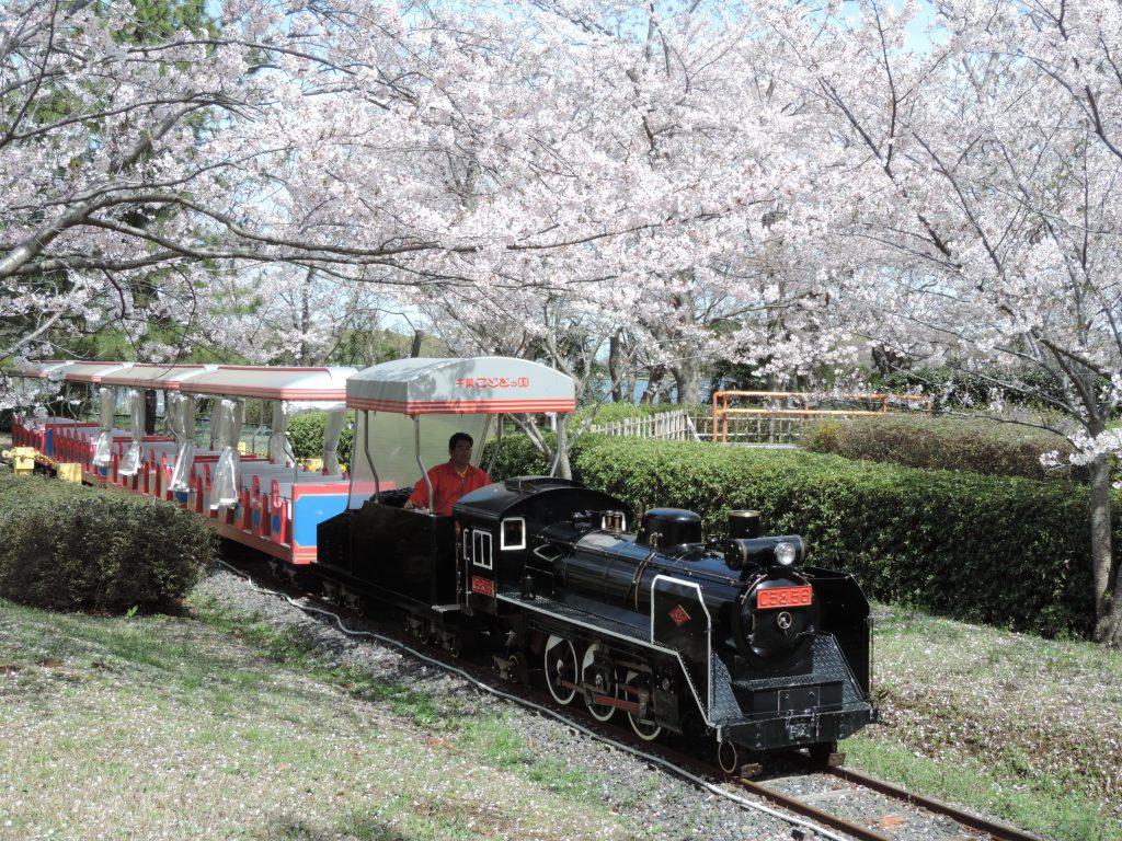 桜の頃のキッズダムトレイン/千葉こどもの国キッズダム(千葉県/市原市)