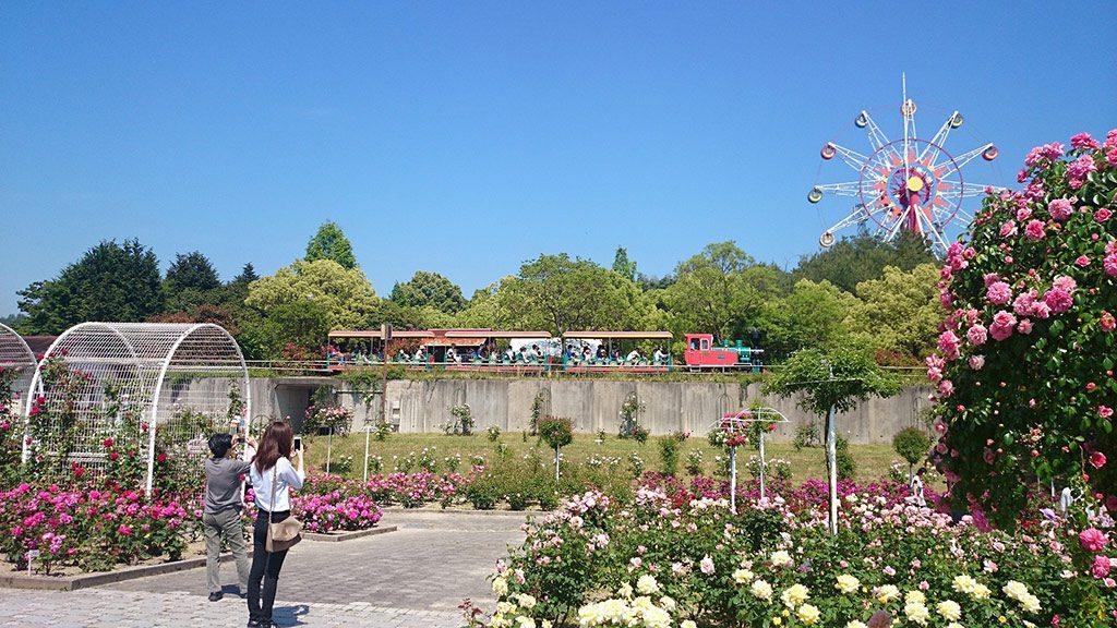 緑豊かな公園の様子/和木町蜂ケ峯総合公園(山口県/玖珂郡和木町)