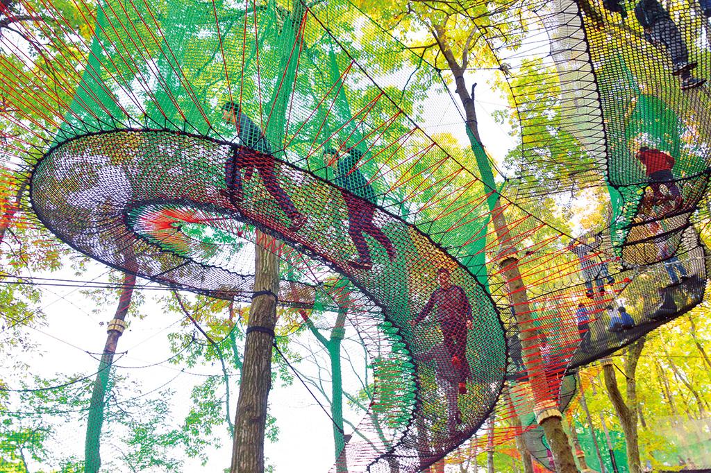 森の中の多様な色形の網で飛んだり跳ねたり/森の空中あそび「パカブ」(神奈川県/南足柄市)