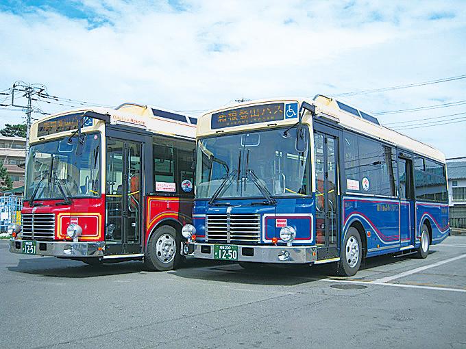 様々な観光施設を結んでいる/観光施設めぐりバス(神奈川県・箱根登山バス)