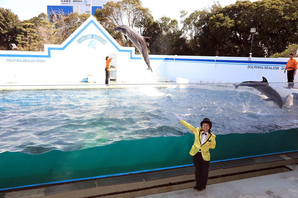 イルカショー「マエストロ! ~Clap your hands!~」/しながわ水族館(東京都/品川区)