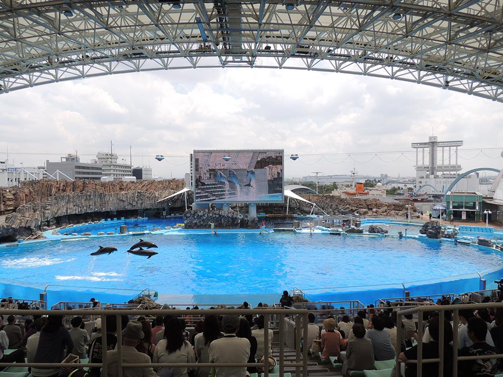 「イルカパフォーマンス」日本最大のメインプール/名古屋港水族館(愛知県/名古屋市)