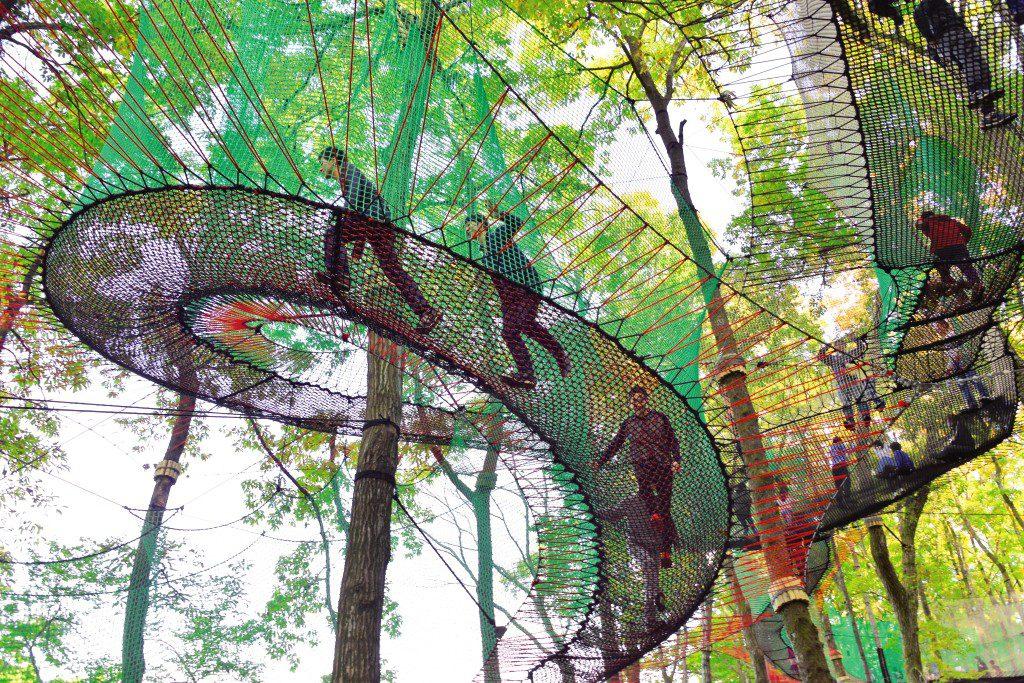 網の上を揺れたり跳ねたり、網の上の遊び場/森の空中あそびパカブ(神奈川県/南足柄市)