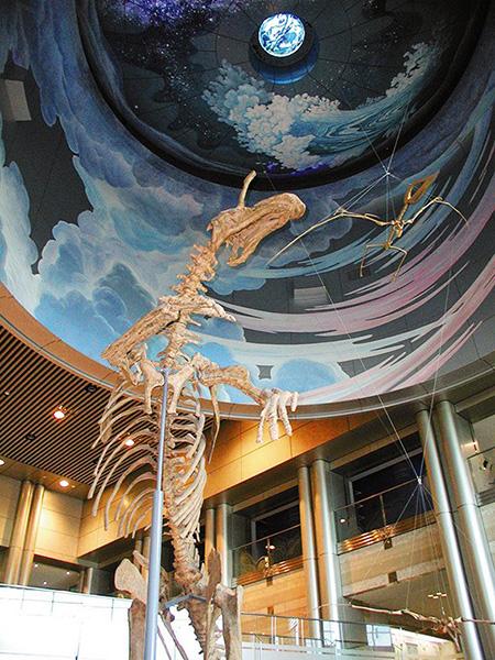 チンタオサウルスの骨格標本が出迎える/神奈川県立生命の星・地球博物館(神奈川県/小田原市)