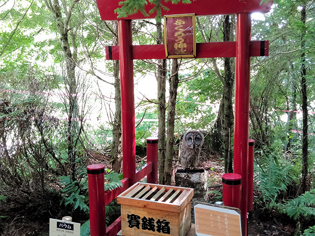 ふくろうの杜の奥のふくろう神社/池の平ホテル(長野県/立科町)