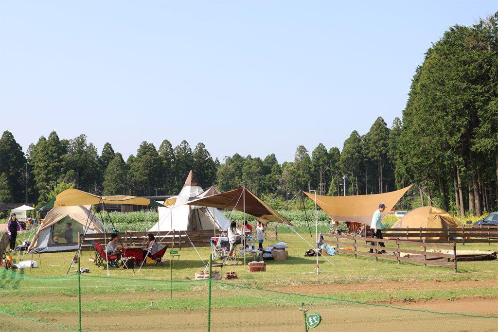 持ち込みテント用のキャンプサイト(千葉県香取市・ザファーム)