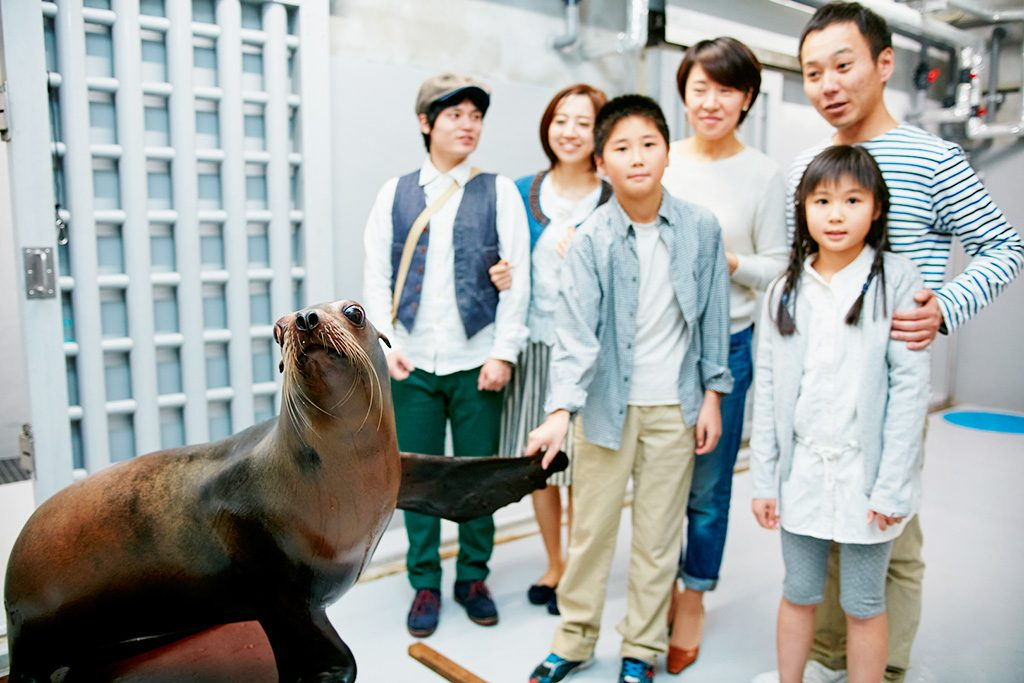 バックヤードツアーを楽しむ家族/仙台うみの杜水族館(宮城県)