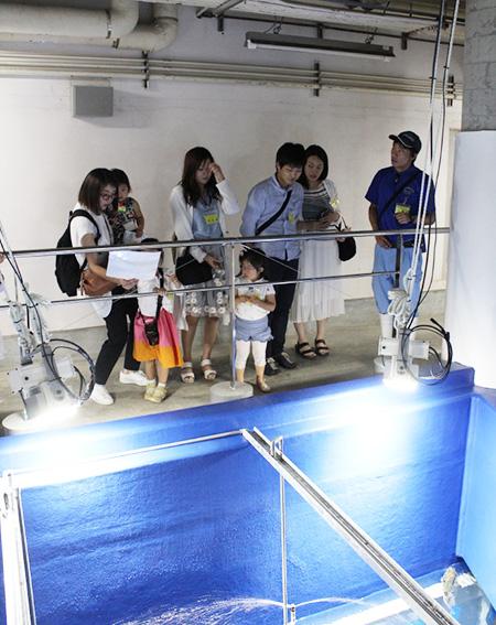 水族館の裏側案内をうける家族/のとじま水族館(石川県/七尾市)
