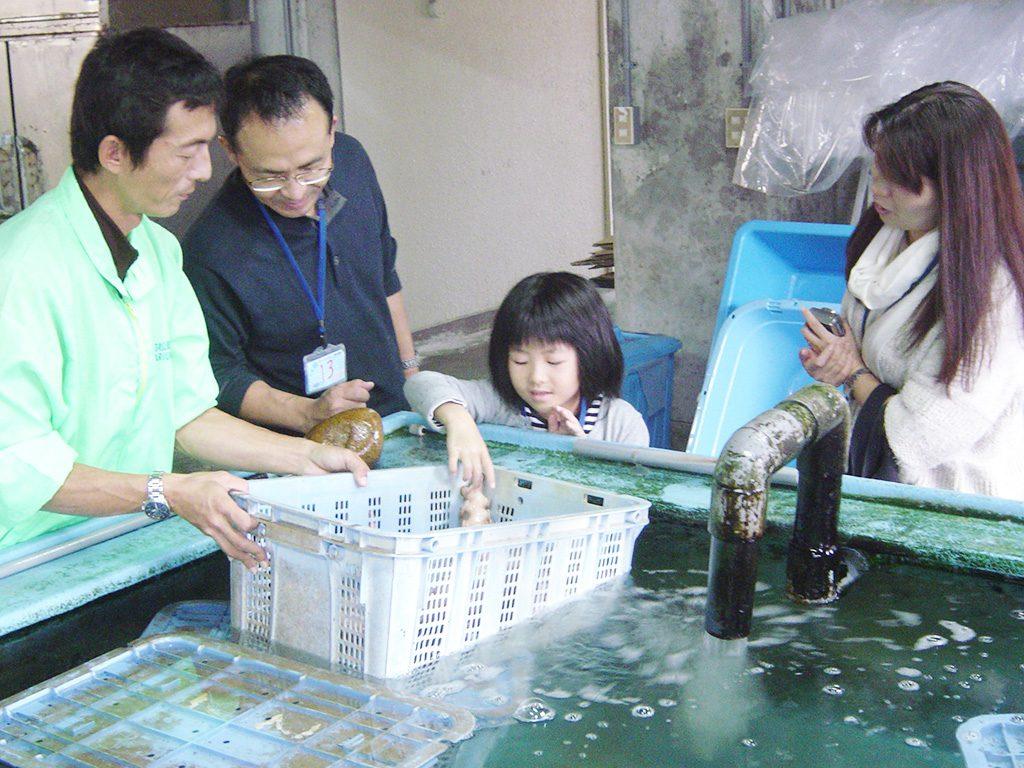 バックヤードで海の生き物にさわる子ども/越前松島水族館(福井県/坂井市)