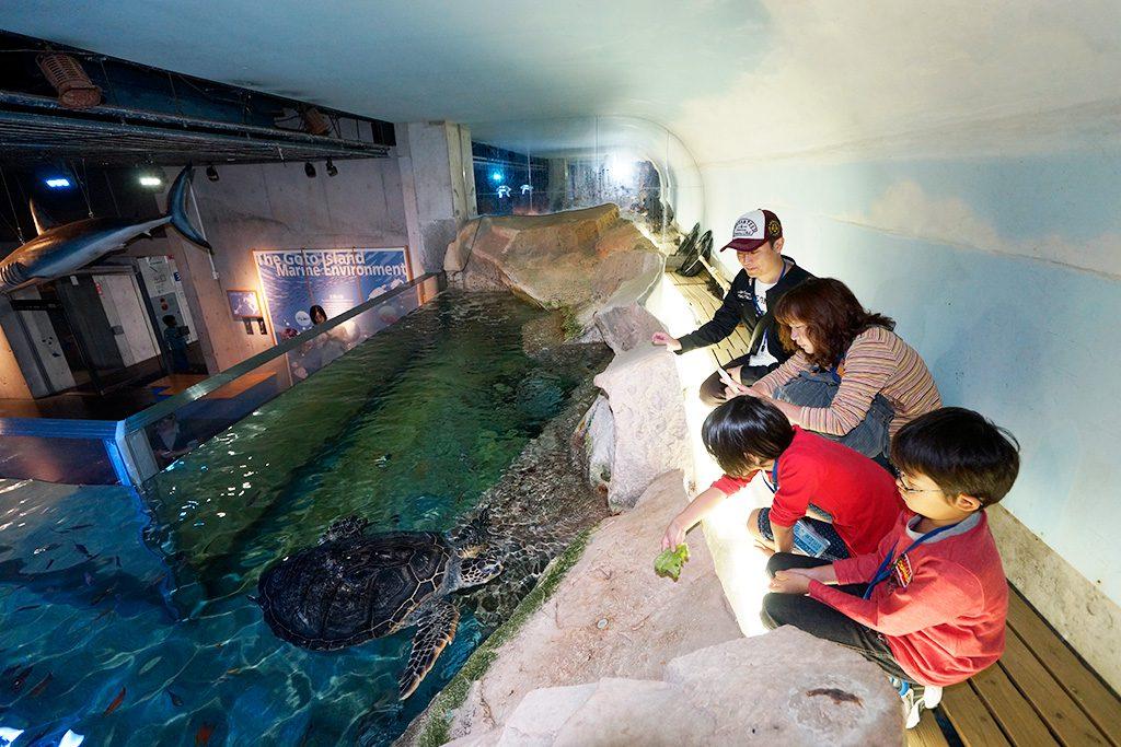 水槽を上から覗く親子/九十九島水族館海きらら(長崎県/佐世保市)