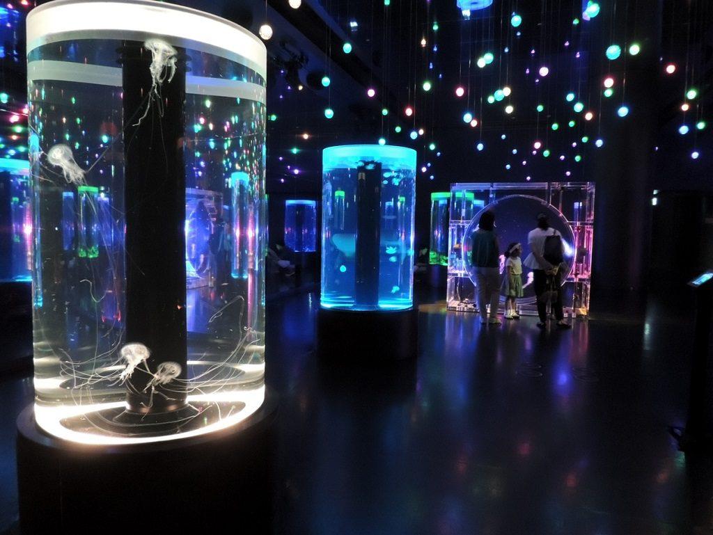 音と光で演出された大空間でゆらゆら漂うクラゲ/マクセル アクアパーク品川(東京都/港区)