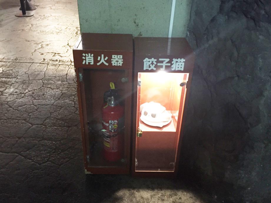 消火器の横に餃子猫/ナンジャタウン(東京都/豊島区)