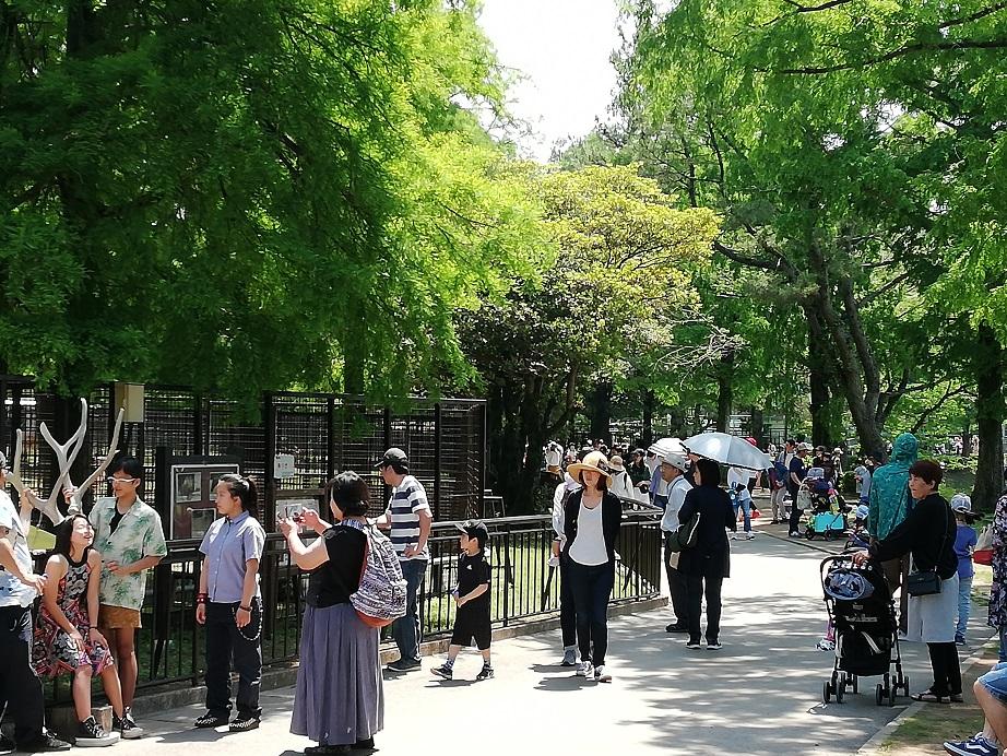 親子連れなどで賑わう動物ゾーン/熊本市動植物園