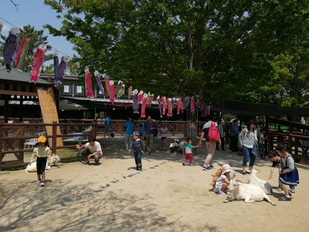 ヤギとふれあう子どもたち/熊本市動植物園
