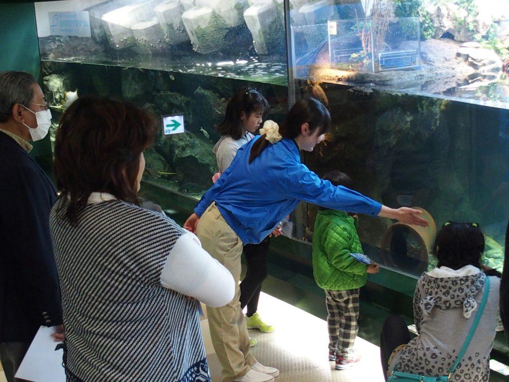 飼育スタッフの丁寧な説明を聞きながら見る「おさかなのブランチ」/相模川ふれあい科学館(神奈川県/相模原市)