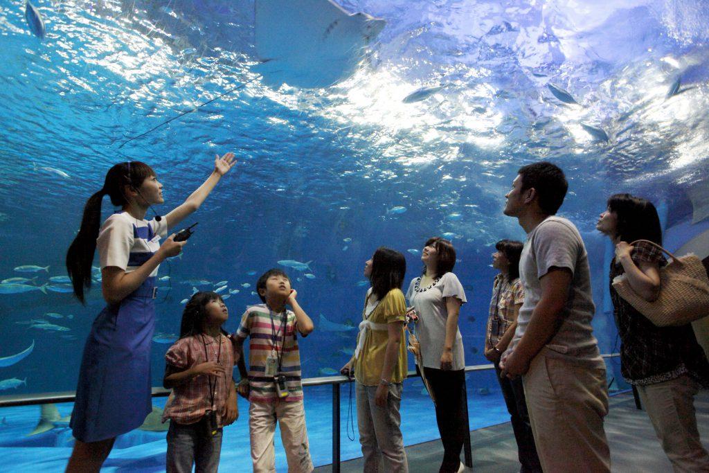 ガイドツアーなど充実の毎日開催されるイベントの様子/いおワールド かごしま水族館(鹿児島県/鹿児島市)