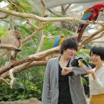 神戸どうぶつ王国で100種類以上の動物たちに出会える!