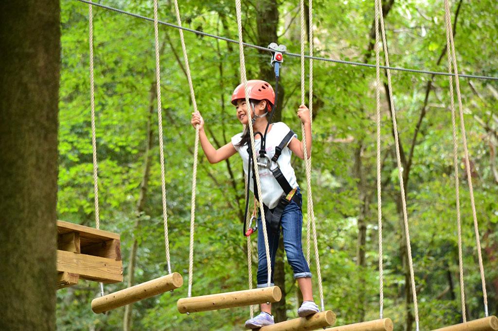 樹上の空中散歩を楽しむ女の子/フォレストアドベンチャー・おおひら(栃木県/栃木市)