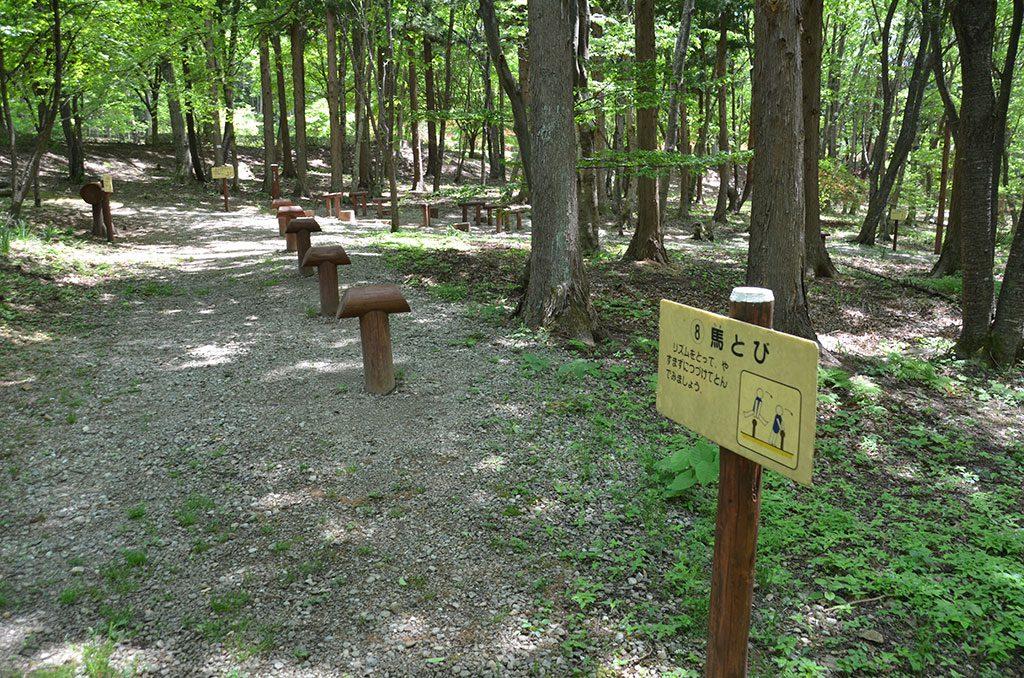 トリム歩道沿いのフィールドアスレチック/箱の森プレイパーク(栃木県/那須塩原市)