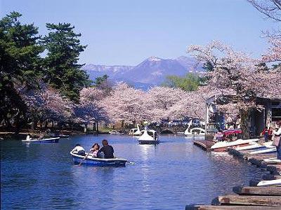 ボート池/敷島公園(群馬県/前橋市)