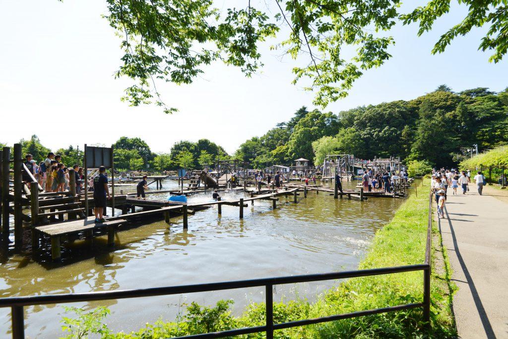 水上にたくさんのアスレチックが並ぶ/清水公園(千葉県野田市)