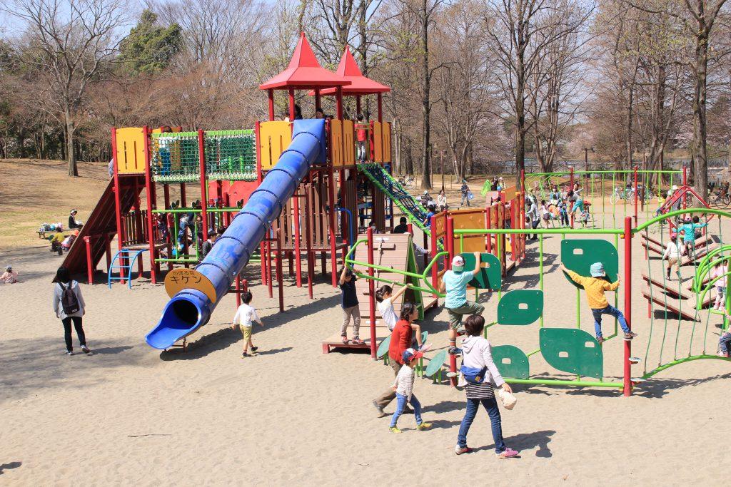 親子で賑わう冒険のトリデの大型複合遊具/千葉県立柏の葉公園