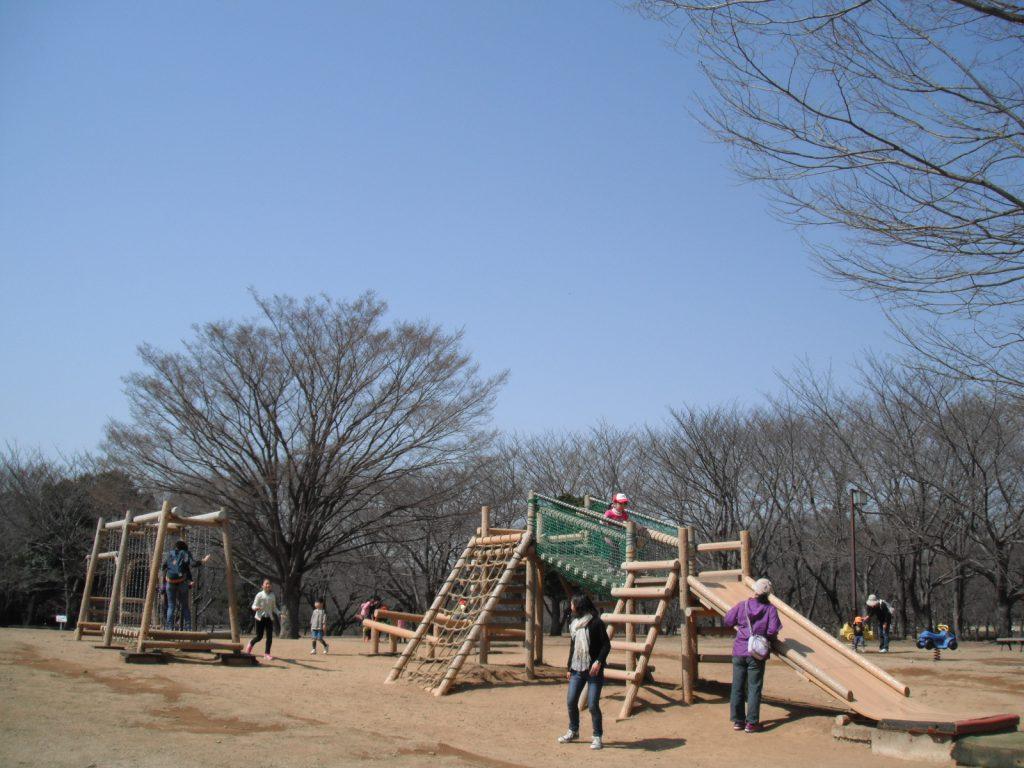 木製アスレチック遊具で遊ぶ人々/千葉県立柏の葉公園