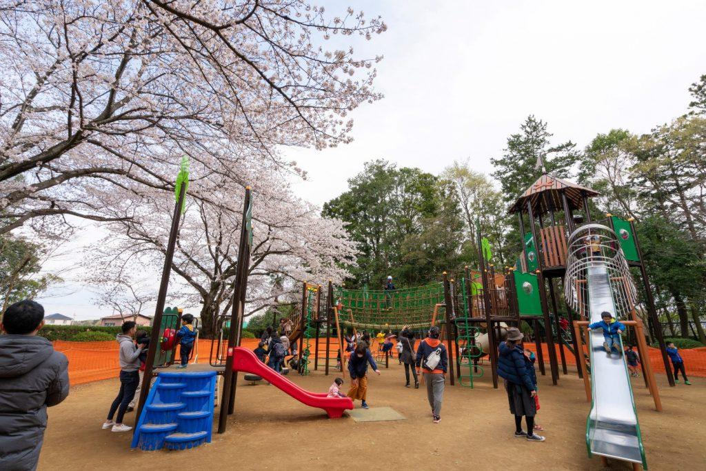 大型複合遊具「ツリーハウスと冒険の森コンビネーション」/流山市総合運動公園(千葉県)