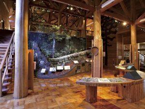 福井県のおすすめ無料スポット6選!博物館やプラネタリウム、ふれあい牧場など
