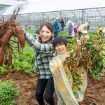 東京・江戸川区のファミリーにおすすめ!ふれあい農園で野菜の収穫体験!