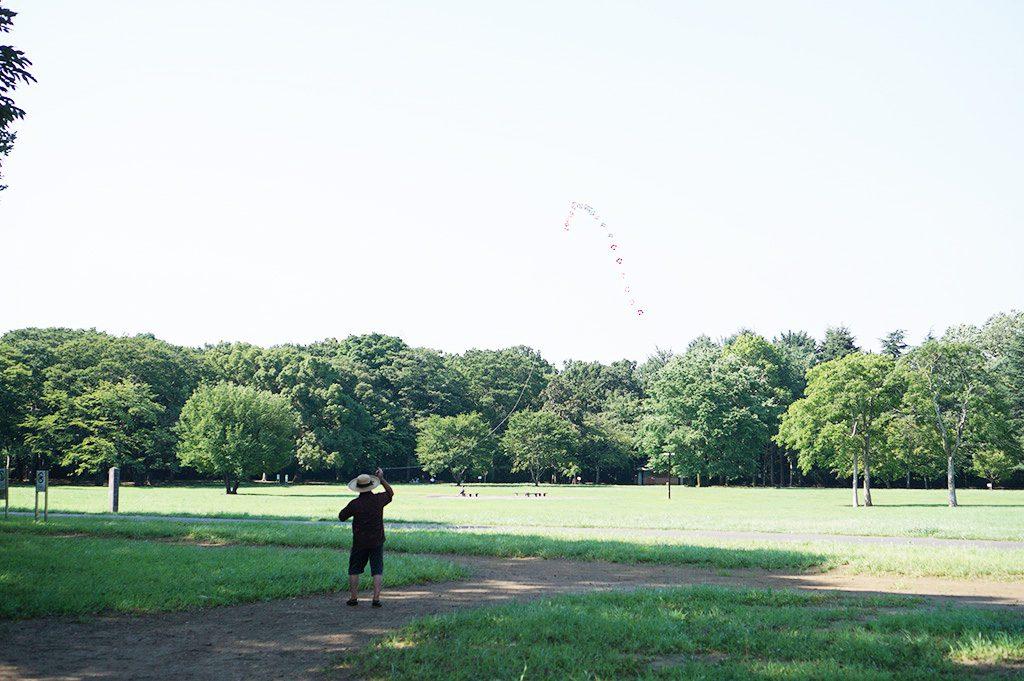 小金井公園の芝生の広場