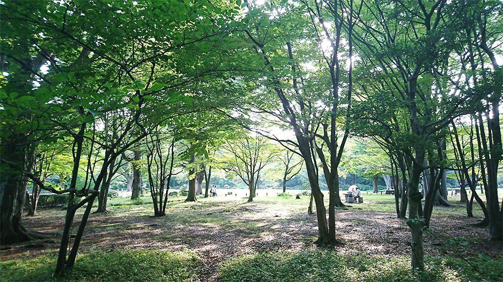 北の丸公園/科学技術館(東京都/千代田区)