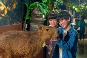 最新テクノロジーと動物のふれあいが融合!オービィ横浜