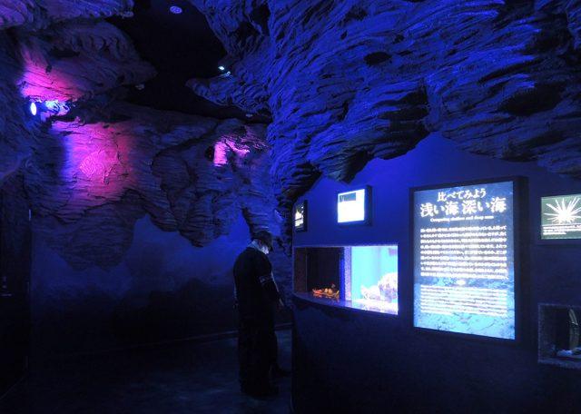 深海にいるような館内/沼津港深海水族館 シーラカンス・ミュージアム(静岡県/沼津市)