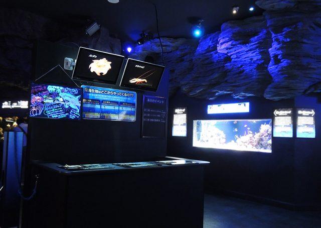 深い海エリア/沼津港深海水族館 シーラカンス・ミュージアム(静岡県)