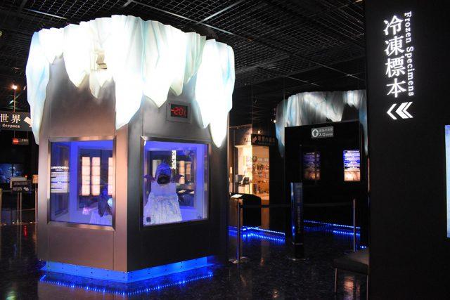 冷凍標本の入口/沼津港深海水族館 シーラカンス・ミュージアム(静岡県/沼津市)