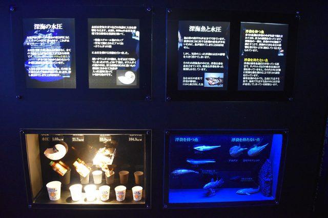 深海と水圧の解説パネル/沼津港深海水族館 シーラカンス・ミュージアム(静岡県/沼津市)