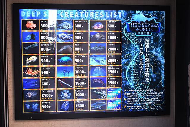 捕獲対象の深海生物リスト/THE DEEP SEA WORLD ~深海王国~(静岡県/沼津市)